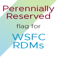 Using the Perennially Reserved Flag for WSFC RDMs